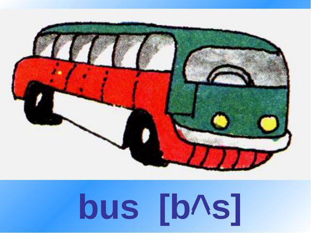 bus [b^s]