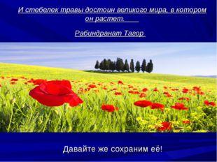 И стебелек травы достоин великого мира, в котором он растет. Рабиндранат Таг