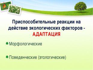 Приспособительные реакции на действие экологических факторов - АДАПТАЦИЯ Морф