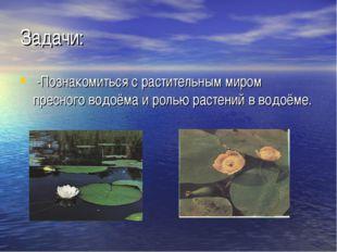 Задачи: -Познакомиться с растительным миром пресного водоёма и ролью растений