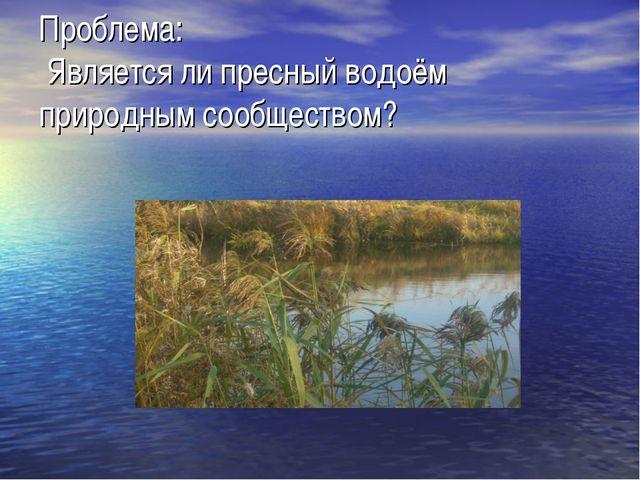Проблема: Является ли пресный водоём природным сообществом?