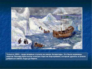 Только в 1894 г. люди впервые ступили на землю Антарктиды. Это были норвежцы