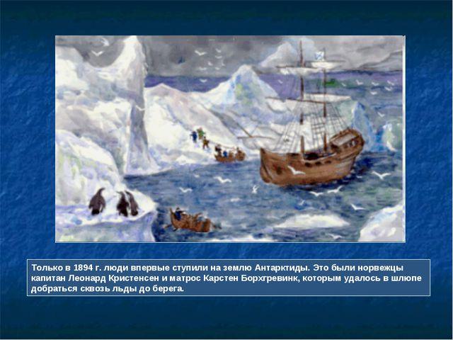 Только в 1894 г. люди впервые ступили на землю Антарктиды. Это были норвежцы...