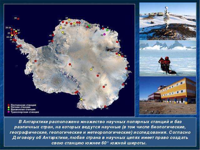 В Антарктике расположено множество научных полярных станций и баз различных с...