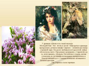 У древних греков есть такая легенда. Молодой Пан - бог лесов и лугов - повстр