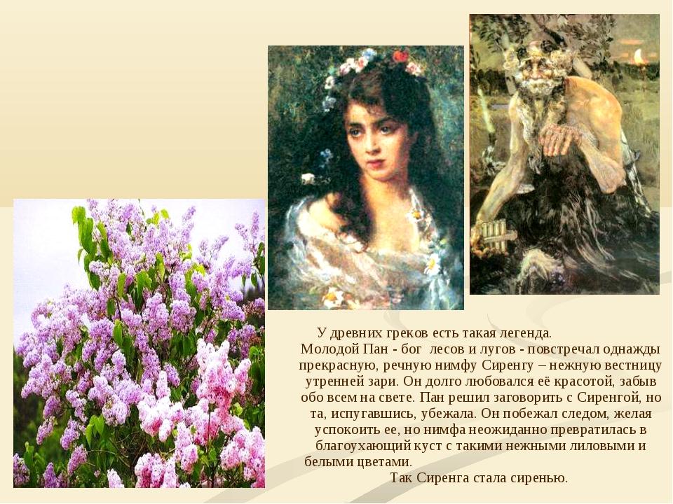 У древних греков есть такая легенда. Молодой Пан - бог лесов и лугов - повстр...
