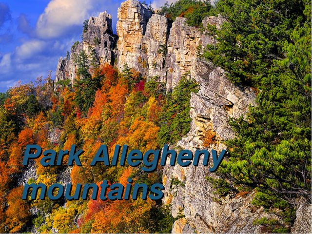 Park Allegheny mountains