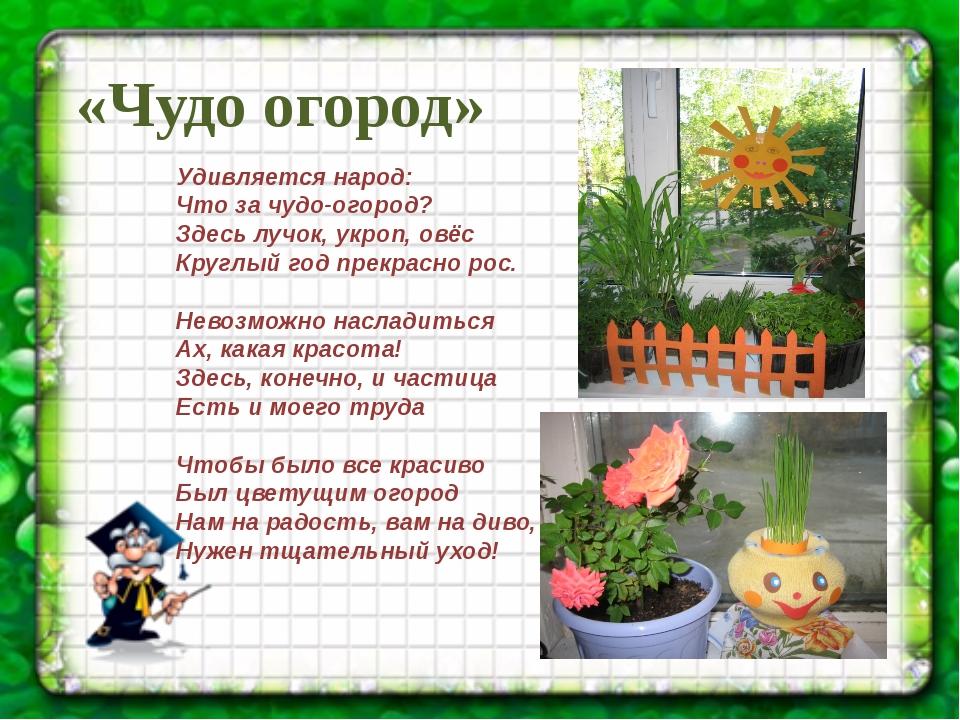картинка к проекту огород на окне вокзала дремлет вот