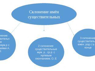 Склонение имён существительных 1 склонение: существительные жен.р., муж.р