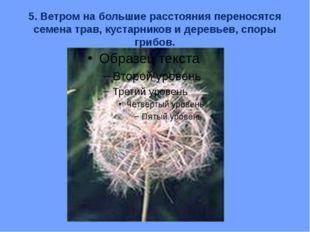 5. Ветром на большие расстояния переносятся семена трав, кустарников и деревь