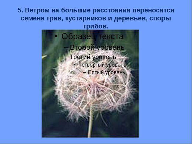 5. Ветром на большие расстояния переносятся семена трав, кустарников и деревь...