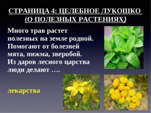 СТРАНИЦА 4: ЦЕЛЕБНОЕ ЛУКОШКО (О ПОЛЕЗНЫХ РАСТЕНИЯХ) Много трав растет полезны