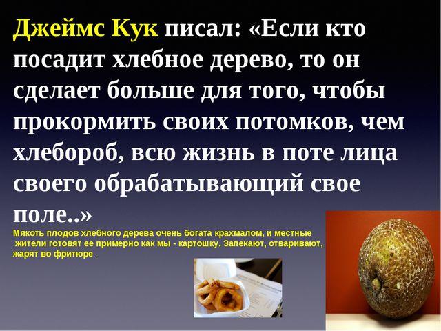 Джеймс Кук писал: «Если кто посадит хлебное дерево, то он сделает больше для...