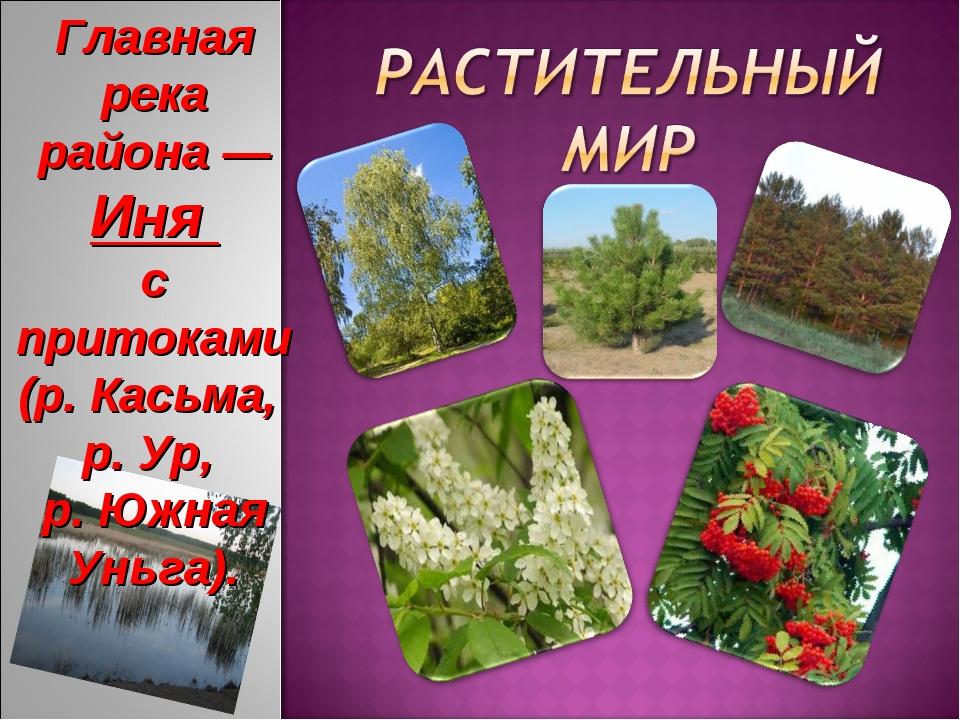 Главная река района — Иня с притоками (р. Касьма, р. Ур, р. Южная Уньга).
