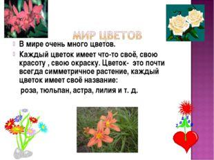 В мире очень много цветов. Каждый цветок имеет что-то своё, свою красоту , св