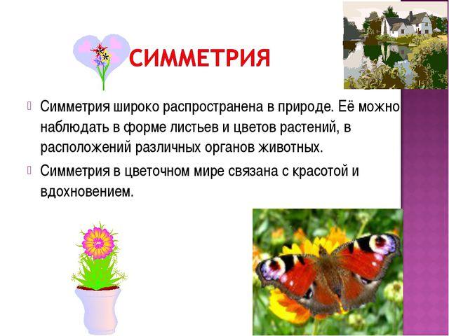 Симметрия широко распространена в природе. Её можно наблюдать в форме листьев...
