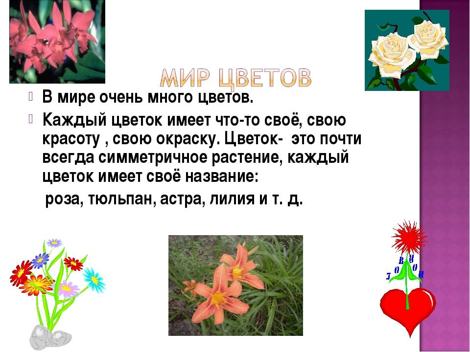В мире очень много цветов. Каждый цветок имеет что-то своё, свою красоту , св...