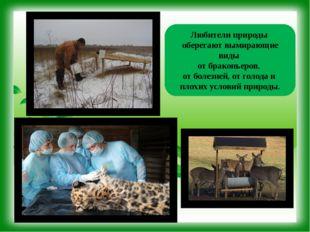 ВИКТОРИНА КРАСНОЙ КНИГИ ОТВЕТ: Самые примечательные особенности этого животно