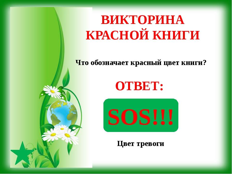 Виньетка - - http://img-fotki.yandex.ru/get/9059/37366204.57e/0_124eba_e48e0...