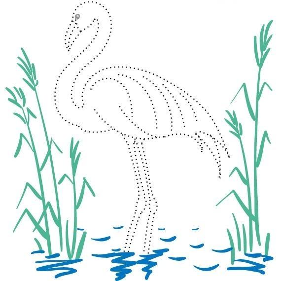 http://img1.liveinternet.ru/images/foto/c/1/apps/4/737/4737393_flamingo-01.jpg