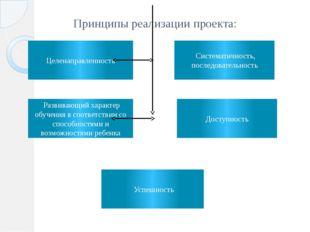 Принципы реализации проекта: Целенаправленность Развивающий характер обучения