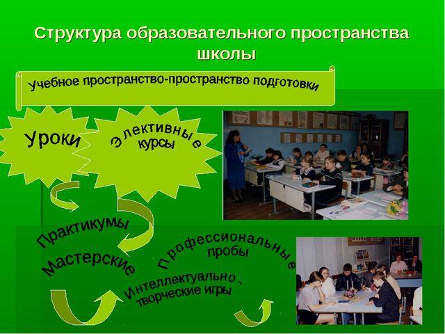 Структура образовательного пространства школы