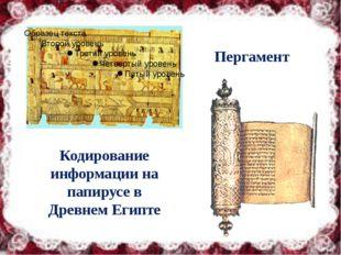 Кодирование информации на папирусе в Древнем Египте Пергамент