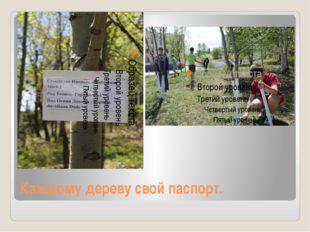 Каждому дереву свой паспорт.