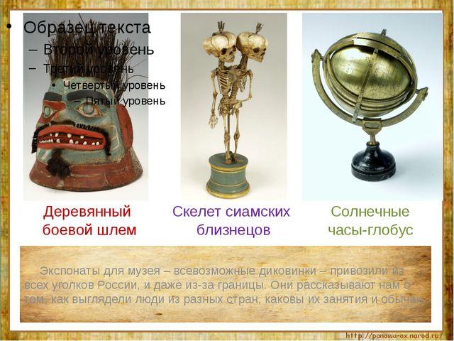 Экспонаты для музея – всевозможные диковинки – привозили из всех уголков Рос...