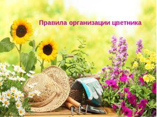Правила организации цветника