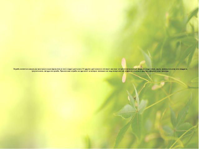 Клумба является самым распространенным вариантом из всех видов цветников. От...