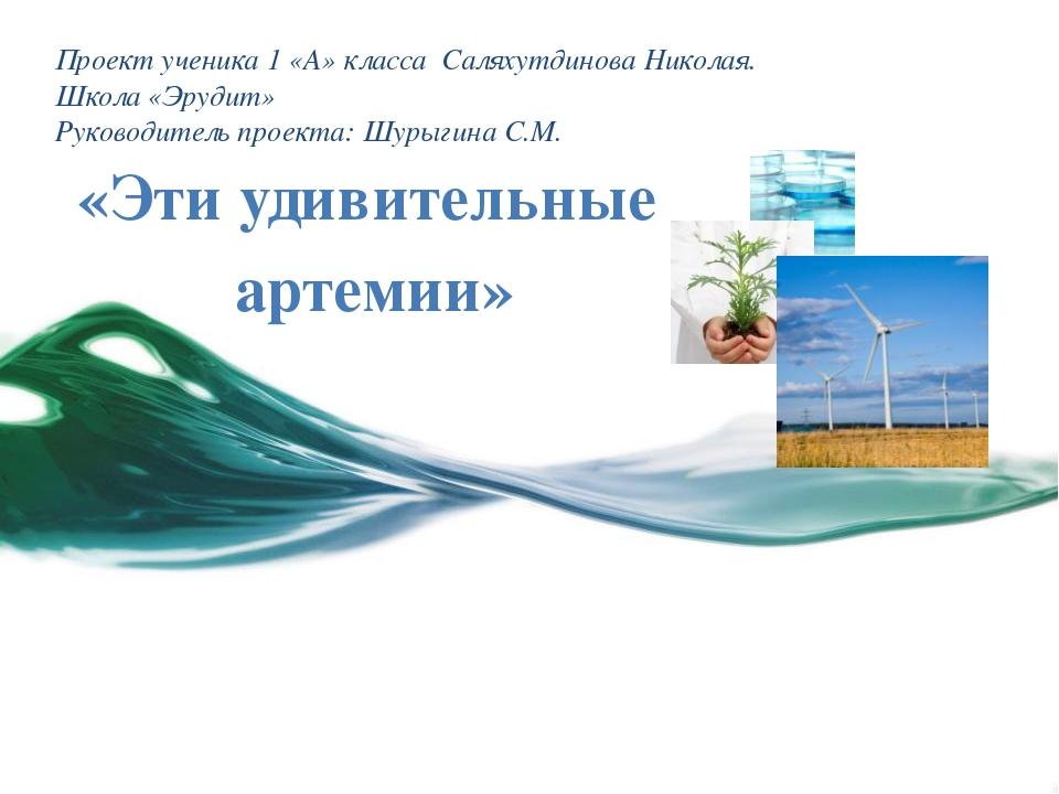 Проект ученика 1 «А» класса Саляхутдинова Николая. Школа «Эрудит» Руководител...