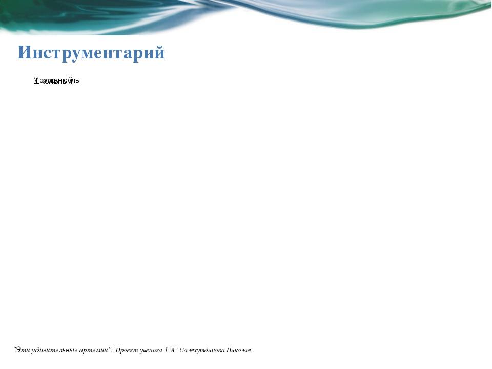 """Инструментарий """"Эти удивительные артемии"""". Проект ученика 1""""А"""" Саляхутдинова..."""