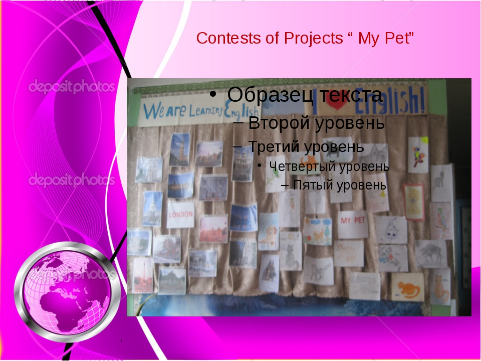 "Contests of Projects "" My Pet"""