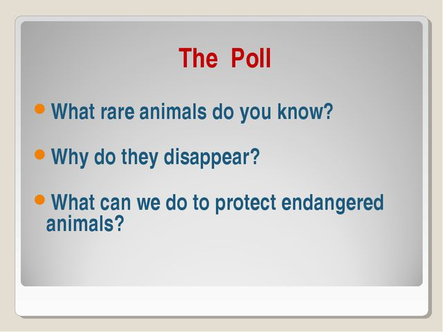 The Poll What rare animals do you know? Why do they disappear? What can we d...