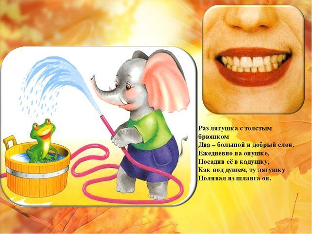 Раз лягушка с толстым брюшком Два – большой и добрый слон. Ежедневно на опушк...