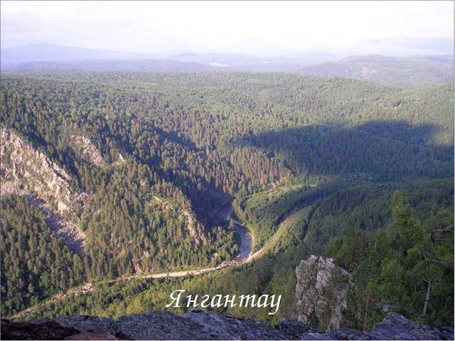 Янгантау