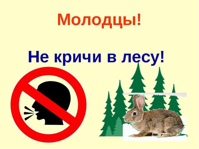 Молодцы! Не кричи в лесу!