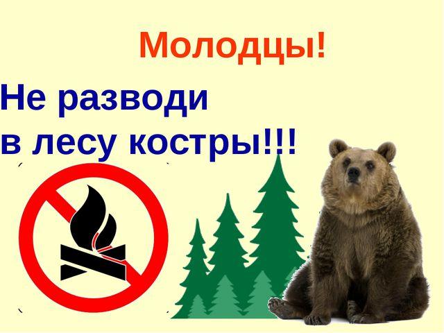 Молодцы! Не разводи в лесу костры!!!