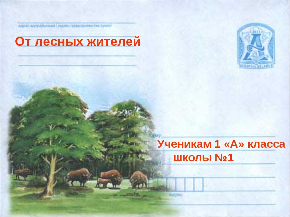 От лесных жителей Ученикам 1 «А» класса школы №1