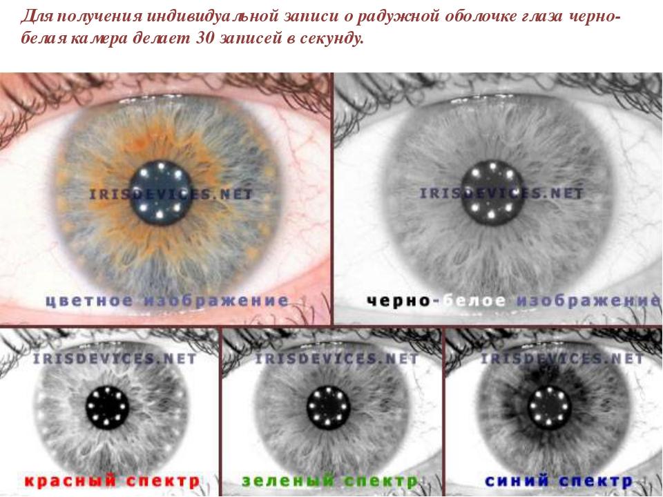 Для получения индивидуальной записи о радужной оболочке глаза черно-белая кам...