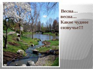 Весна… весна… Какое чудное созвучье!!!