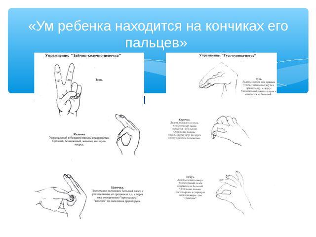 http://f6.s.qip.ru/sGa1l «Ум ребенка находится на кончиках его пальцев»