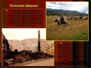 Латинская Америка Усилилась эксплуатация шахт, были открыты фабрики по перера