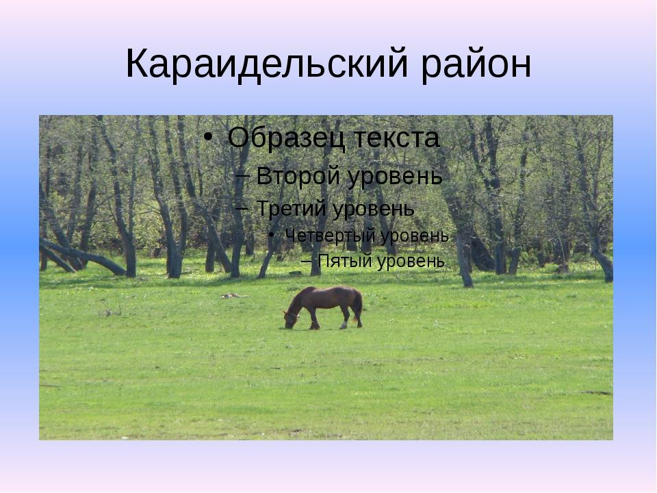 Караидельский район