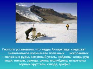 Геологи установили, что недра Антарктиды содержат значительное количество по