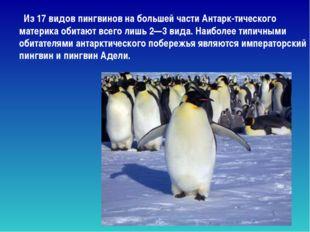 Из 17 видов пингвинов на большей части Антарк-тического материка обитают все