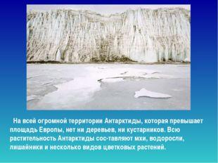 На всей огромной территории Антарктиды, которая превышает площадь Европы, не