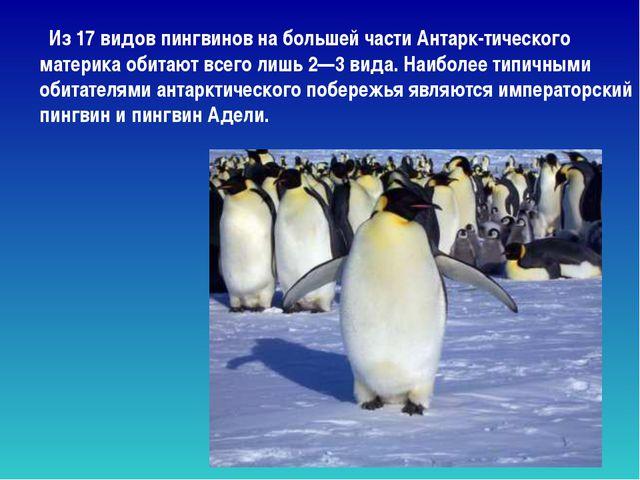 Из 17 видов пингвинов на большей части Антарк-тического материка обитают все...