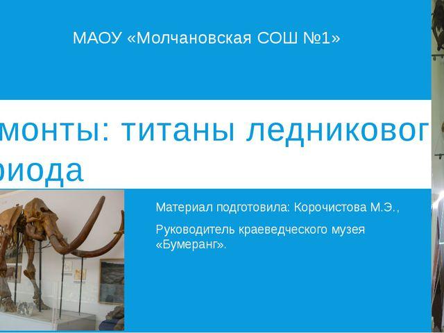 Мамонты: титаны ледникового периода Материал подготовила: Корочистова М.Э., Р...